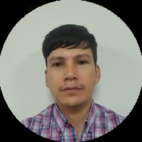 Ing. Luis Sosa
